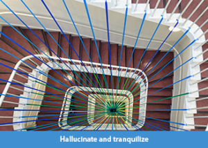 Hallucinate and tranquilize